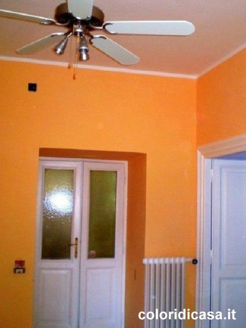 Immagine 23 32 tinteggiatura interni for Colori tinteggiatura pareti casa